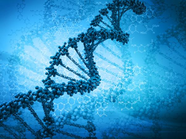 Молекулярное тестирование Caris